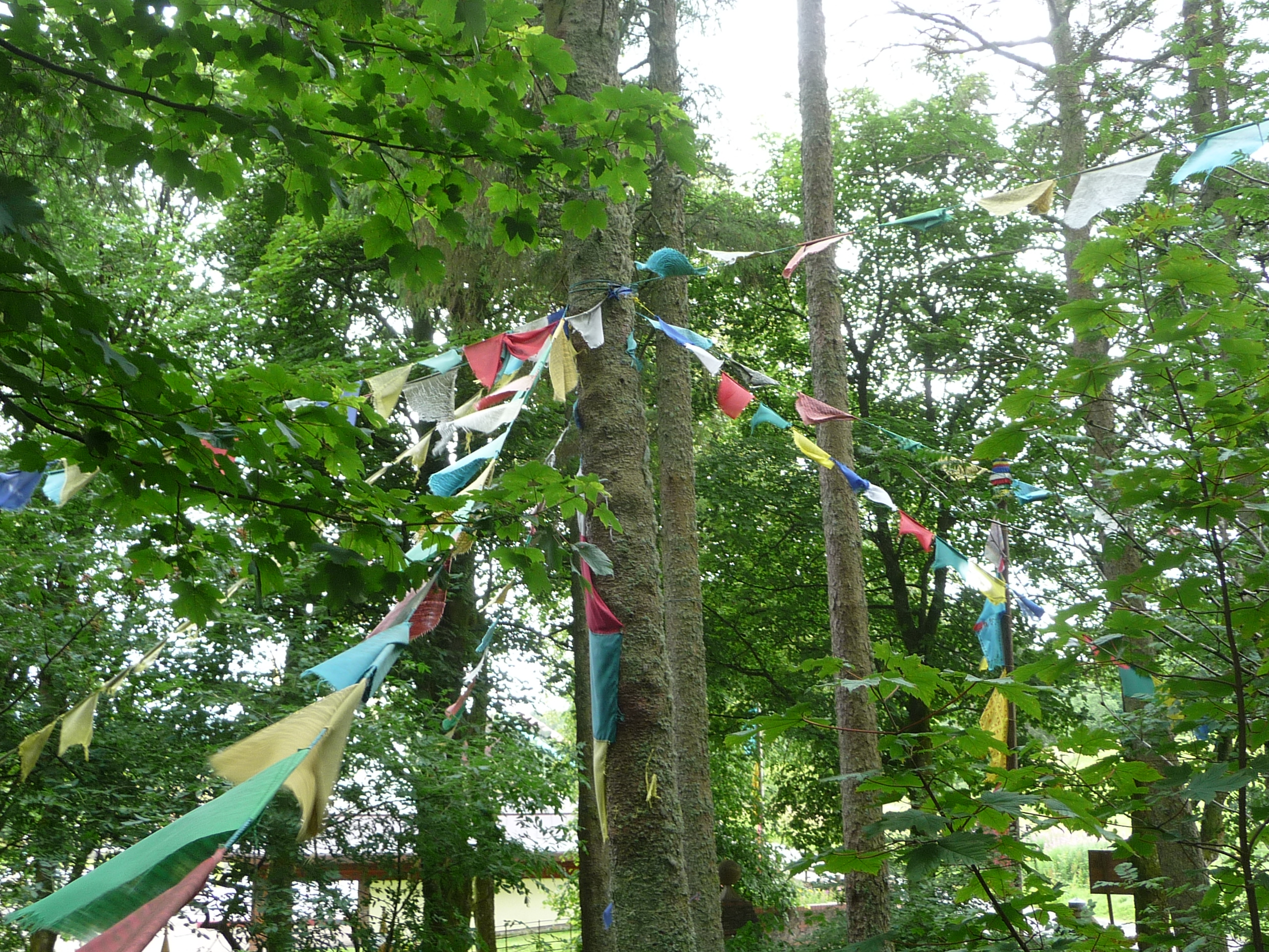 Prayer_flags_06